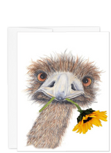 Load image into Gallery viewer, Ostrich collection Hello