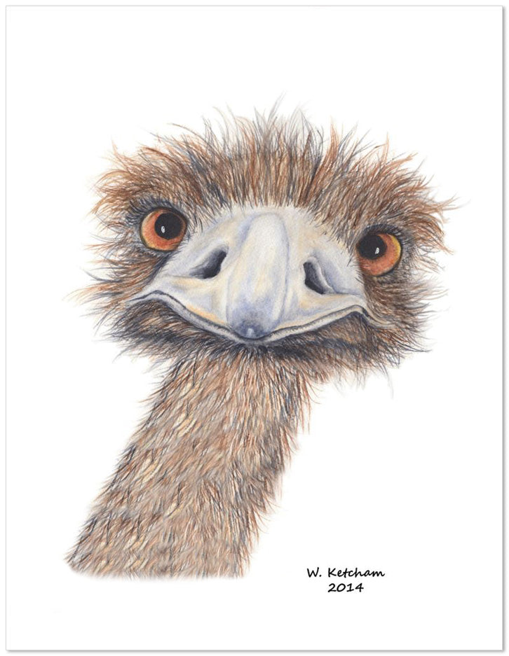 Peering ostrich watercolor print