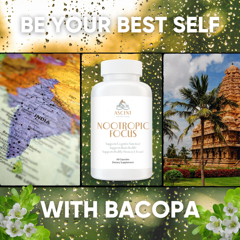 Be Your Best Self with Bacopa Monnieri