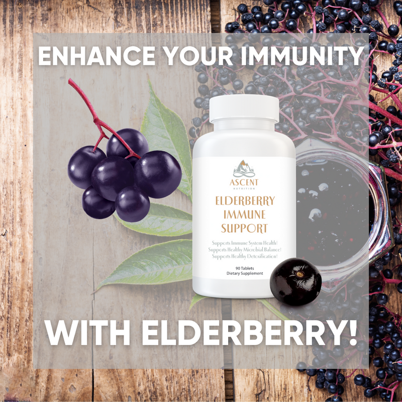 Enhance Your Immunity With Elderberry