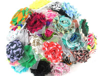 Grab Bag of 25 Regular Shabby Flowers