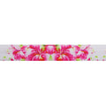 "Tequila Sunrise - 5/8"" Printed Fold Over Elastic"