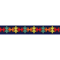 "Autism with Border -  5/8"" Printed Fold Over Elastic"