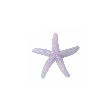 "1.25"" Ombre Starfish - Flatback Resin Applique"