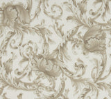 Nancy Koltes Acanthus Bedding - Latte