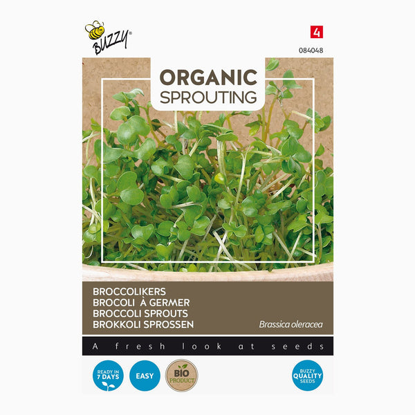 Buzzy Organic Sprouting Broccolikers 084048
