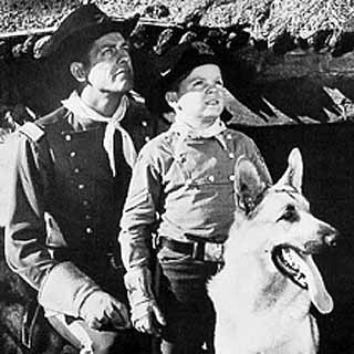 RIN TIN TIN DVD NEAR COMPLETE (1954) SERIES 36 DVD SET