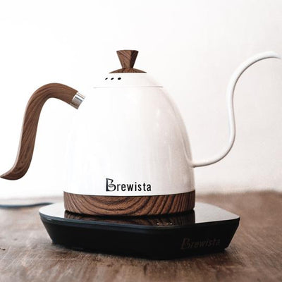 Brewista Artisan 600mL Gooseneck Kettle - White