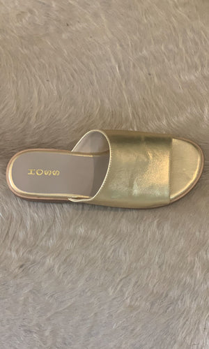 HOSS Gold Gazelle Slides