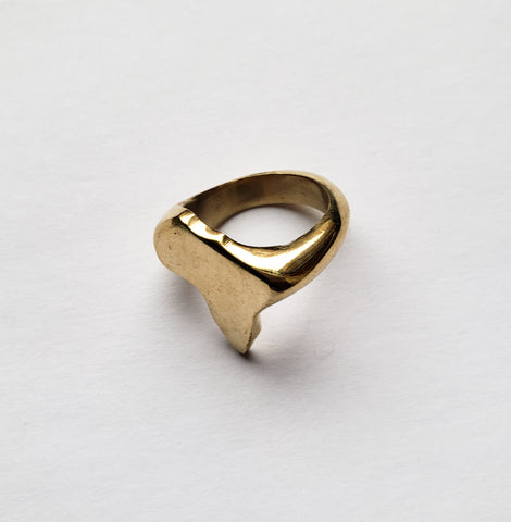 Ruguru - Brass Africa Map Ring