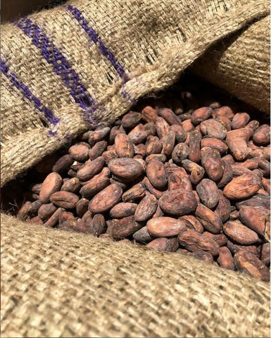 Photo of a sack of cocoa beans that make the chocolate