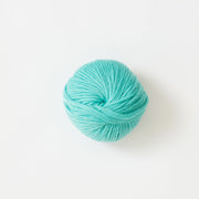 Chunky Merino | Mint To Be