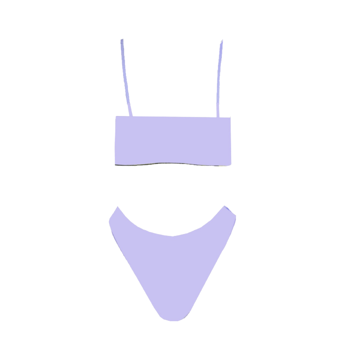 Summer Bikini Purple