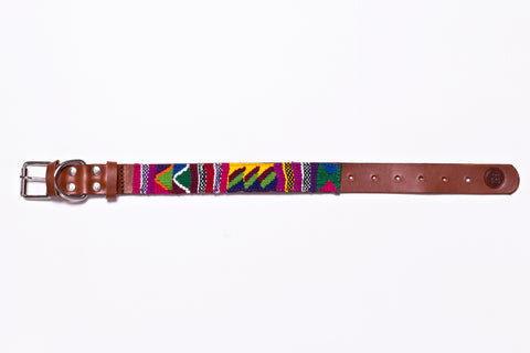 The Quetzal Dog Collar
