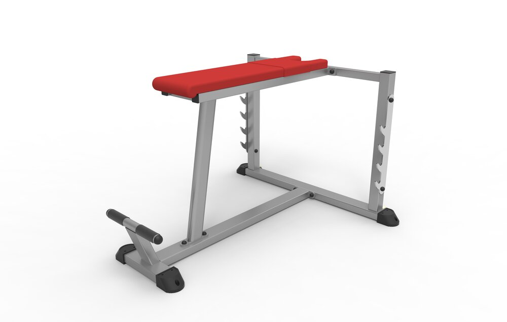 Bench Pull/Seal Row/Prone Row