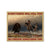 Choose Something Fun Like Bear Hunting EZ26 1910 Canvas