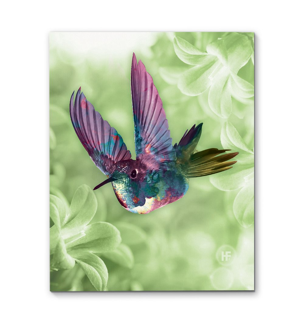 Hummingbird 01 EZ08 2209 Canvas
