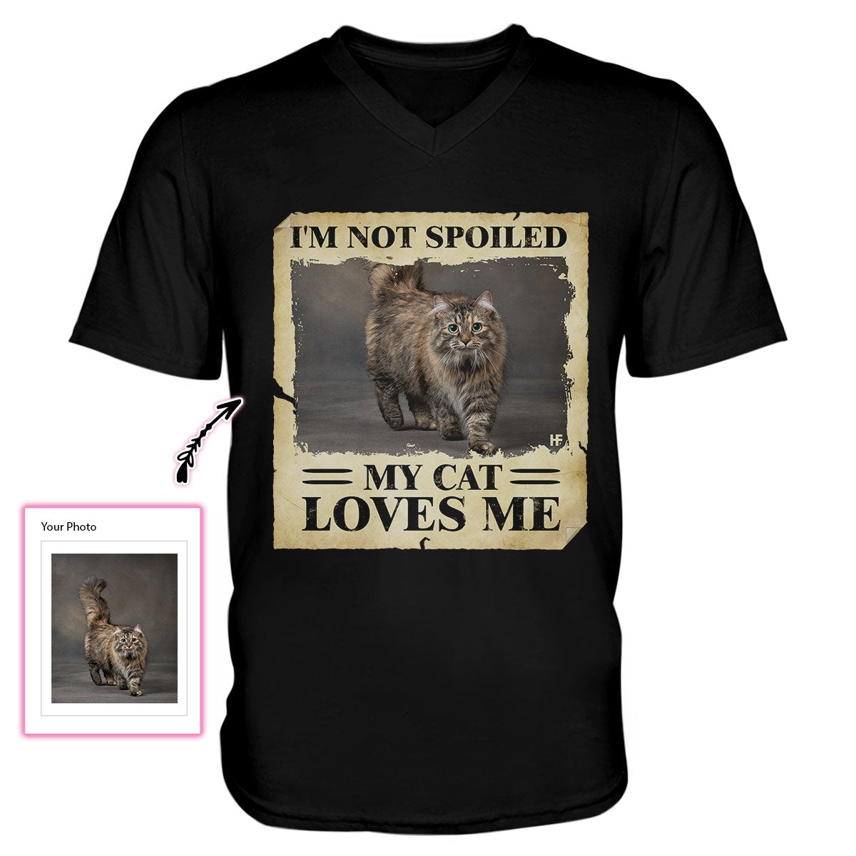 Im Not Spoiled My Cat Loves Me EZ21 1311 Custom Men V-neck T-shirt