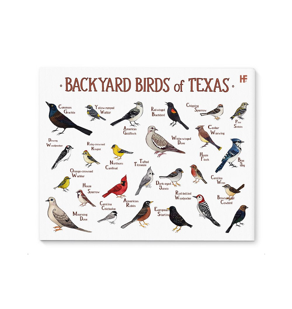 Texas Backyard Birds EZ23 0701 Canvas