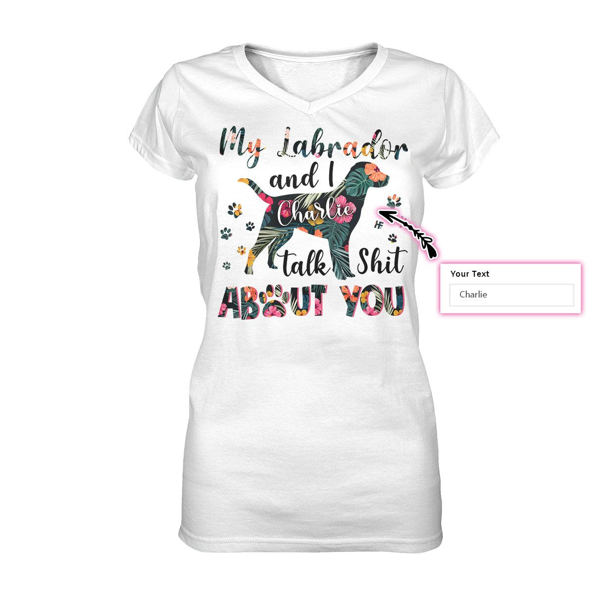 My Labrador And I Talk Shit About You EZ07 Custom Women V-neck T-shirt