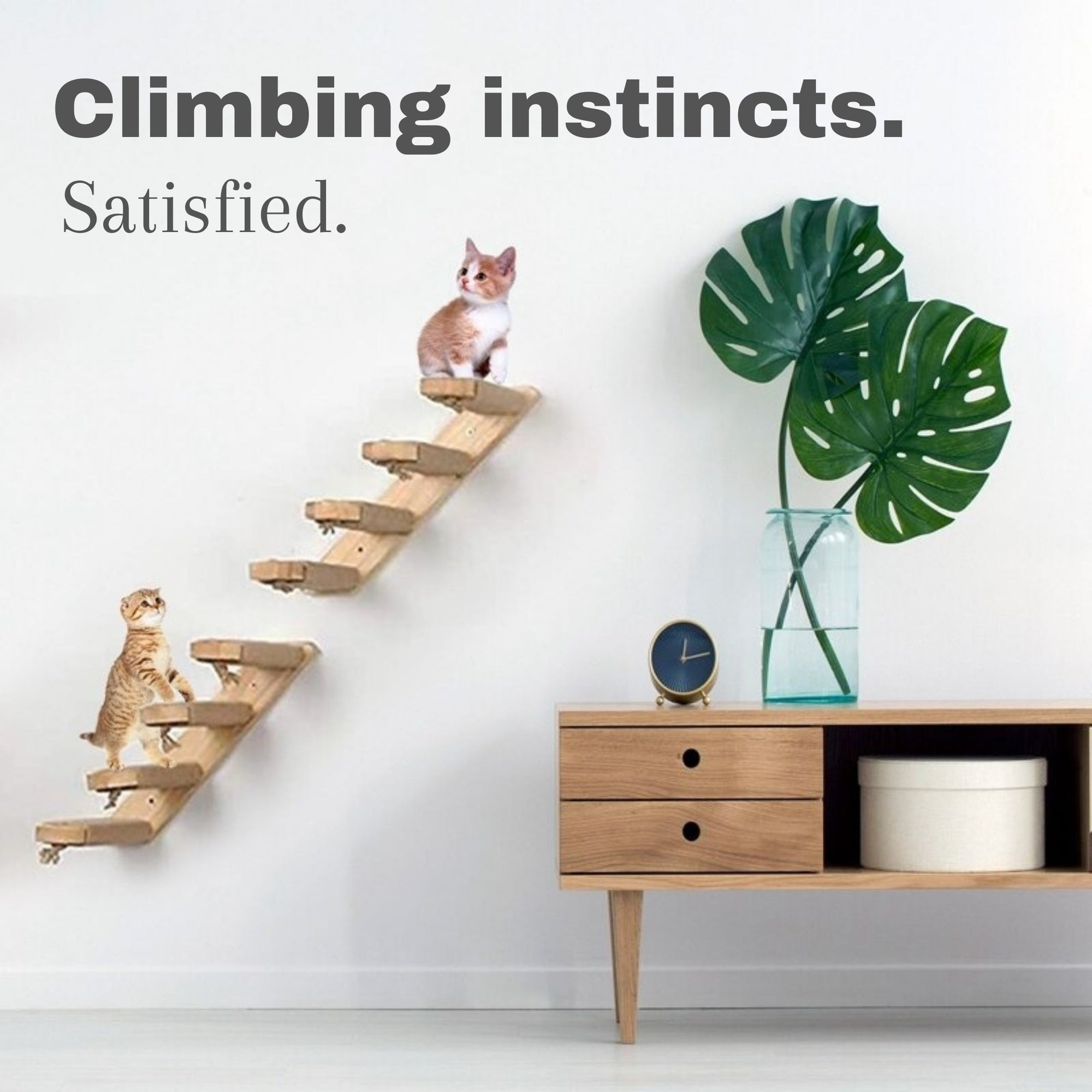 Pet Wooden Cat Climbing Frame Wall-mounted Ladder Cat Steps Cat Scratching Board Cat Toy Multi-layer Cat Frame Sisal Tie Rope