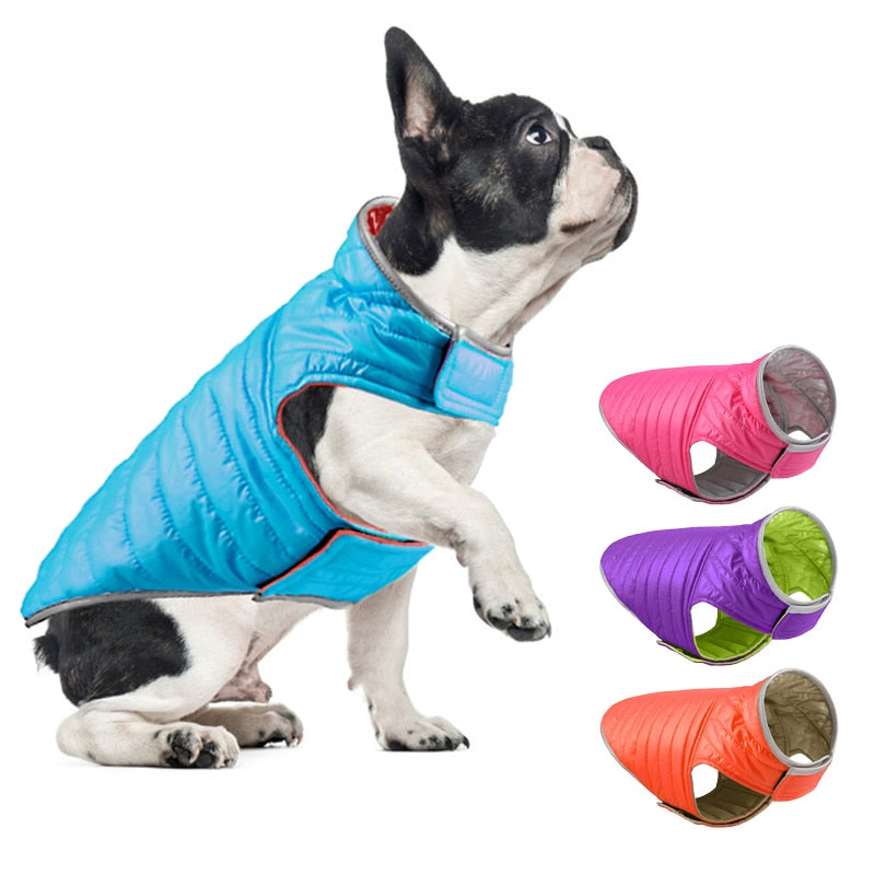 Reversible Small Dog Down Jacket
