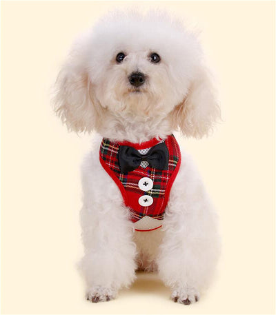 Elegant Bowtie Dog Harness Vest