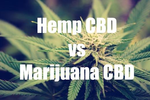 What is Hemp Derived CBD? (And What's Up With California's Hemp Laws)