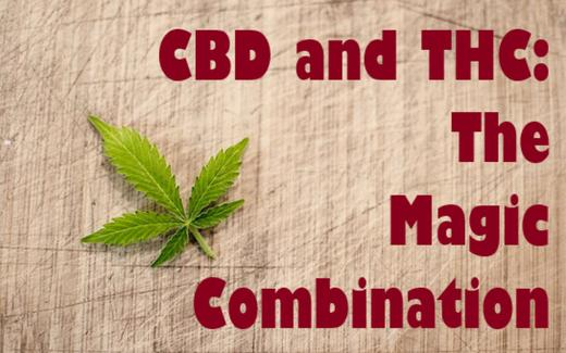 The Synergistic Effect: How CBD and THC Balance Each Other Out