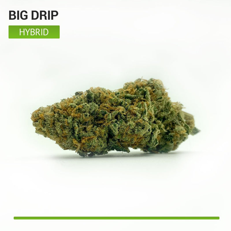 Big Drip (Hybrid)-Bloom Society