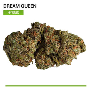 Dream Queen (Hybrid)-Bloom Society