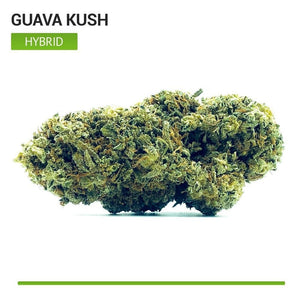 Guava Kush (Hybrid)-Bloom Society