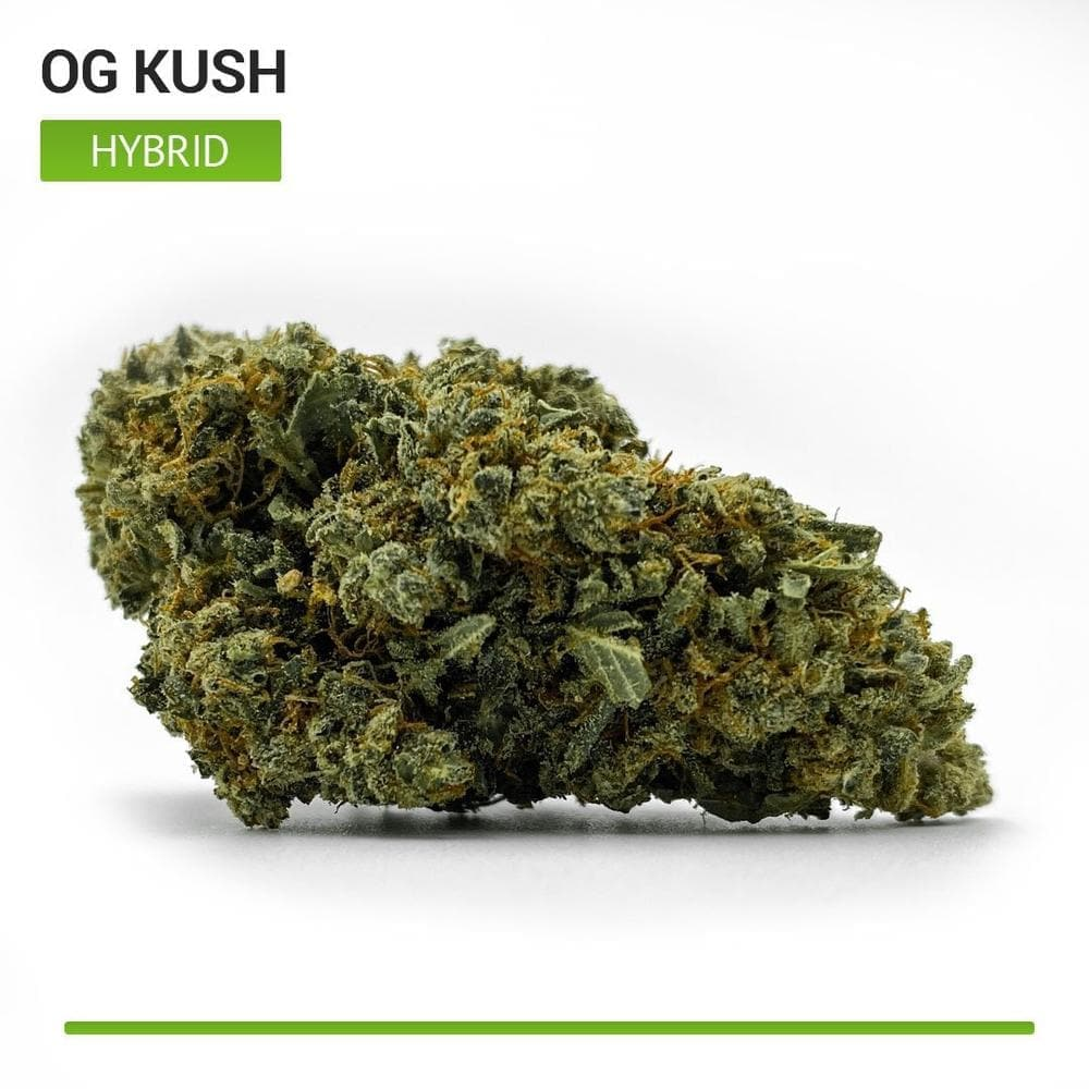 OG Kush (Hybrid)-Bloom Society