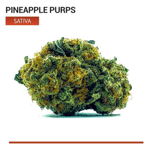 Pineapple Purps (Sativa)-Bloom Society