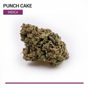 Punch Cake (Indica)-Bloom Society