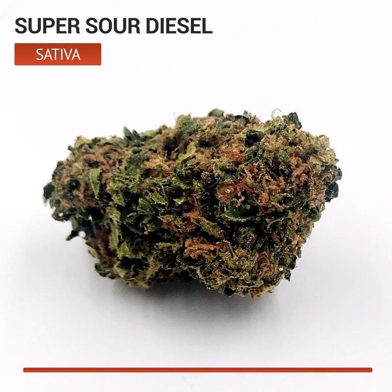 Super Sour Diesel (Sativa)-Bloom Society