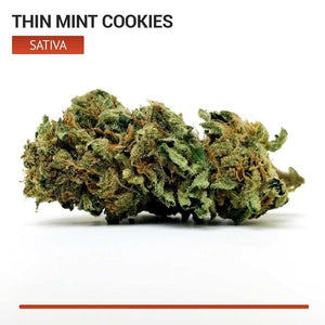 Thin Mint Cookies (Sativa)-Bloom Society