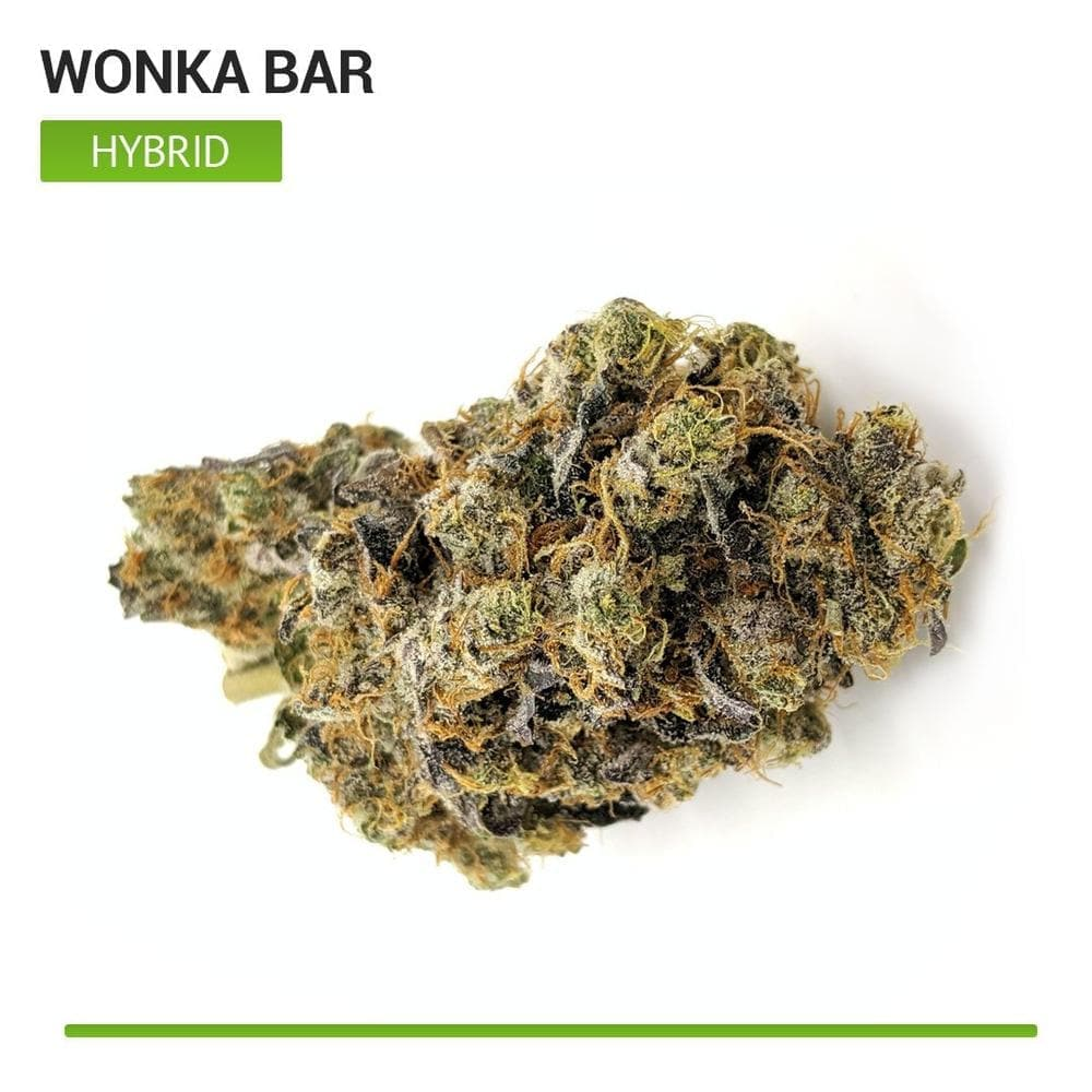 Wonka Bars (Hybrid)-Bloom Society