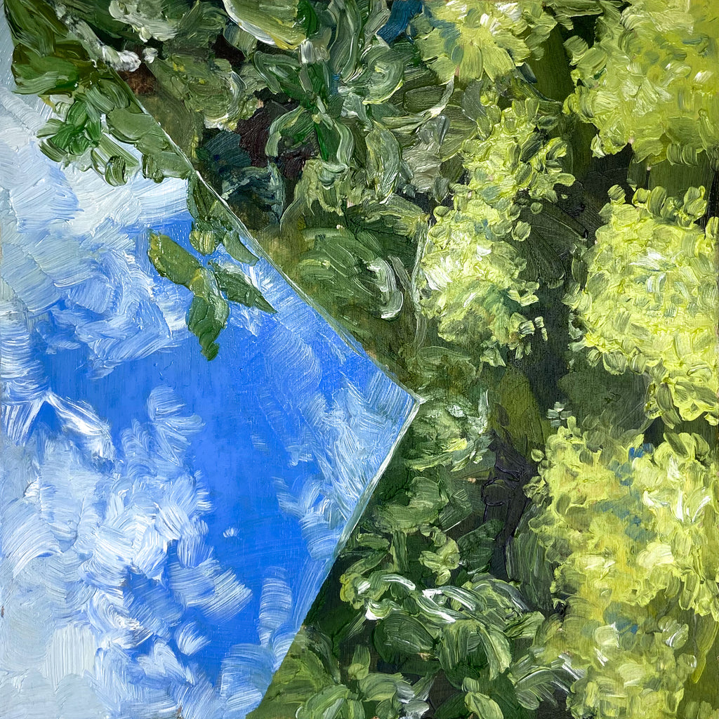Clouds in Hydrangeas