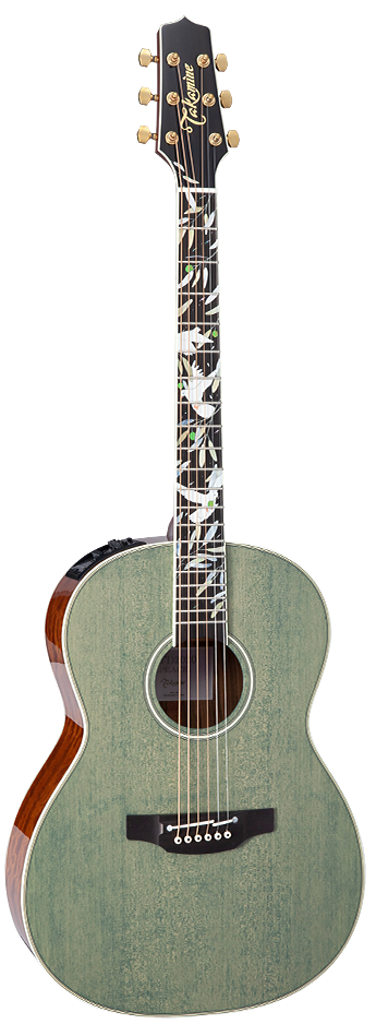 TAKAMINE LTD2020 PEACE Acoustic/Electric