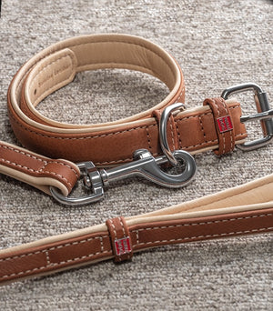 Classic Leather Dog Leash and Collar