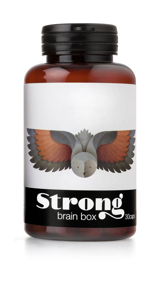 BRAIN BOX - the wisest in our collection.