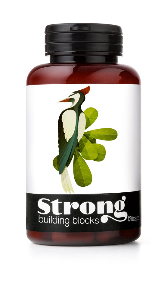 BUILDING BLOCKS - Pure. Complete. Protein. Be Back Soon!