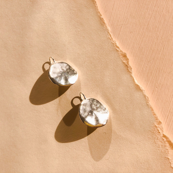 Terra Hook Earrings in Sterling Silver