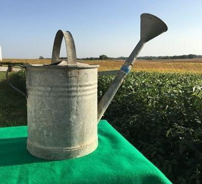 Vintage French Watering Can, Rustic Farmhouse Decor, Galvanized Garden Decor H,