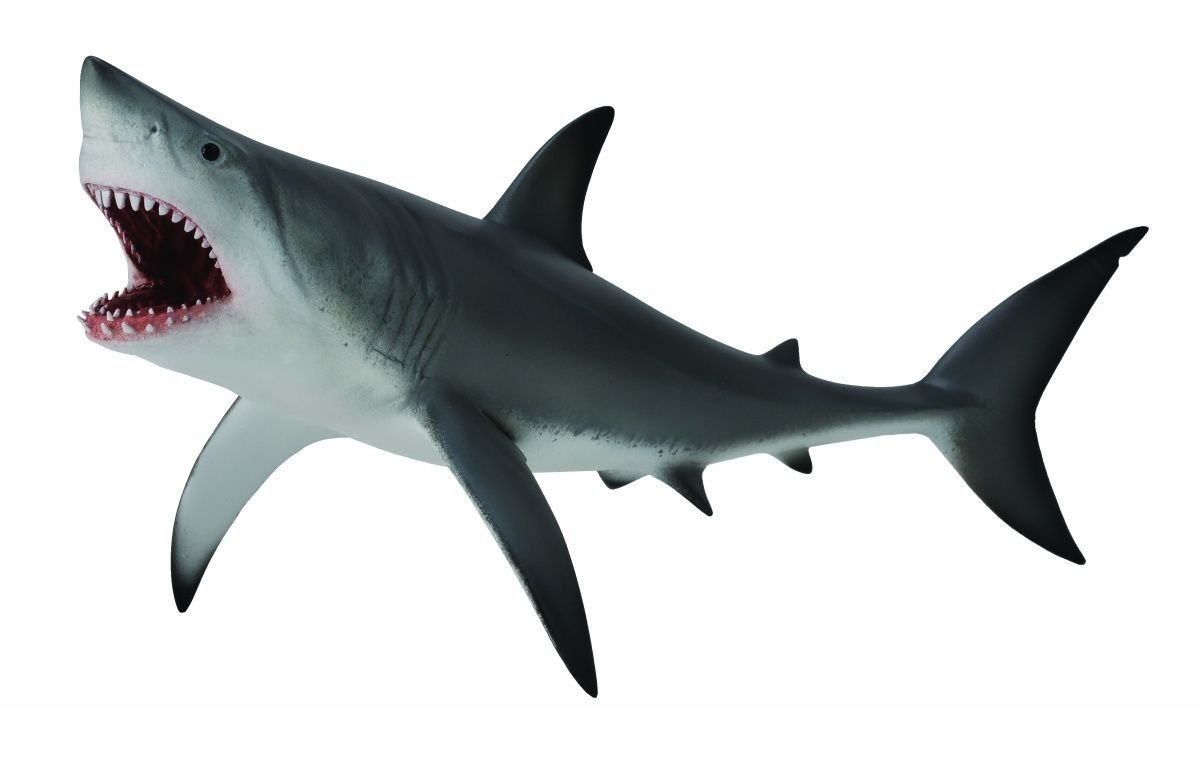 CollectA - Great White Shark
