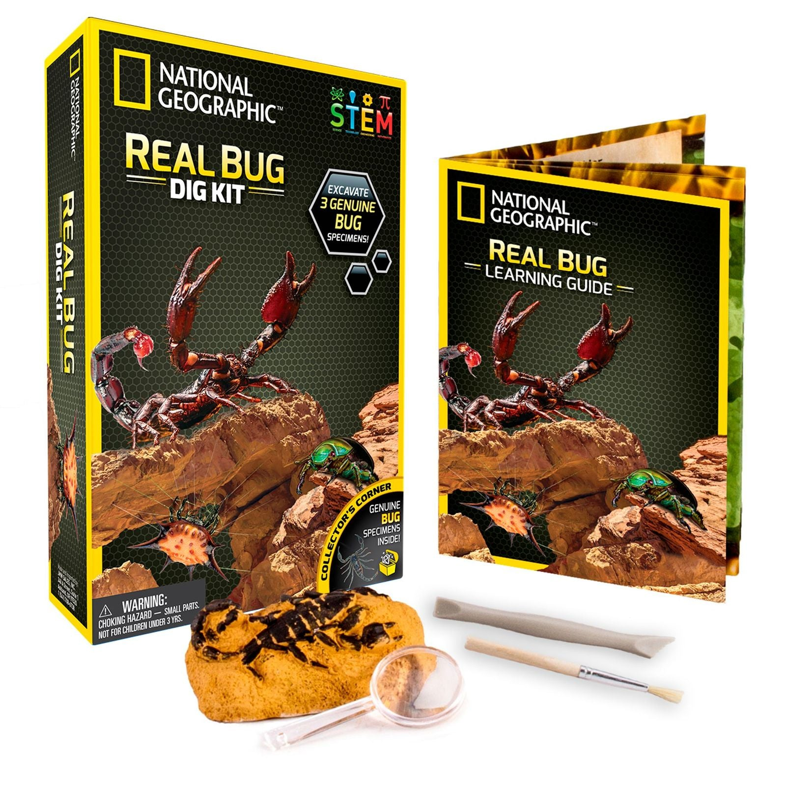 National Geographic: Real Bug Dig Kit