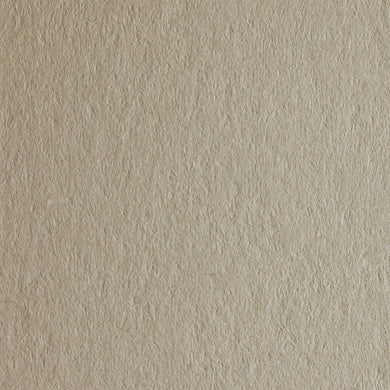 Woodstock Camoscio 170gsm Recycled Camel Coloured Natural Premium Paper