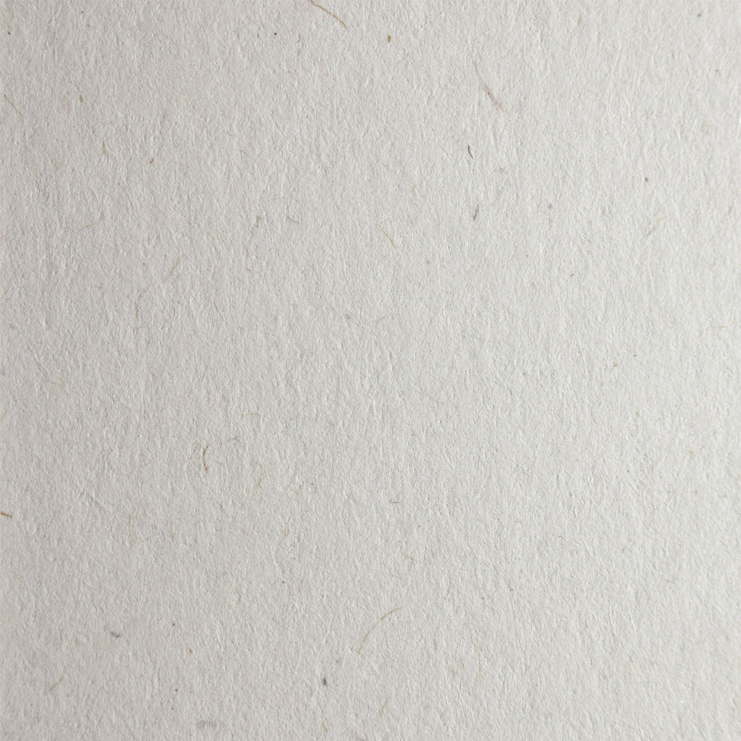 Woodstock Bettula 170gsm Recycled Ivory Fleck Coloured Natural Premium Paper