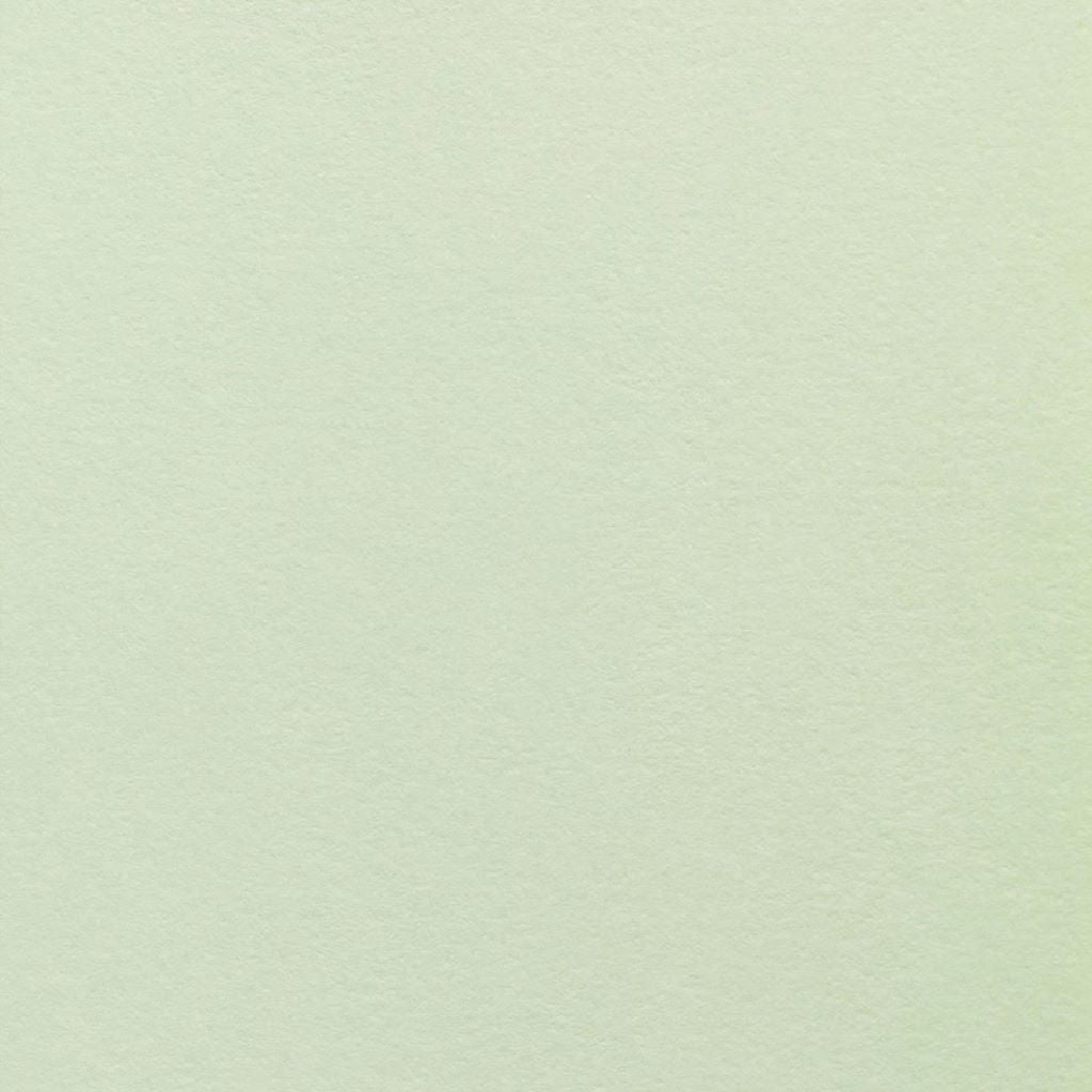 Colorplan Pistachio 270gsm Uncoated Pastel Green Premium Card